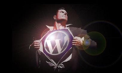 Por qué es imprescindible la cache en #WordPress | Diseño y Recursos Web | Scoop.it