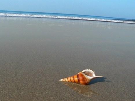 Best Beaches in Karnataka | travel | Scoop.it