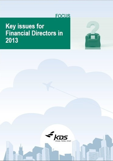 Key Issues for Financial Directors in 2013 | Travel & Expense | Scoop.it