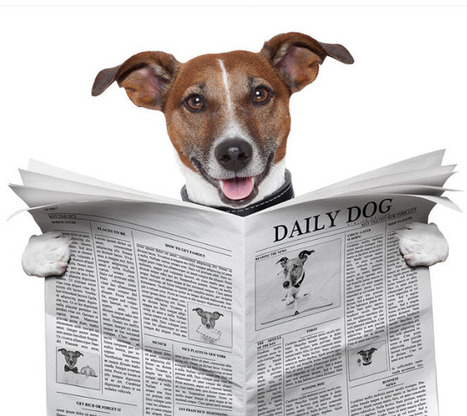 They Begged Me Not to Write This… Twitter Headlines to Change your Life   Jeffbullas's Blog   In-Bound Marketer & Business Unbound   Scoop.it
