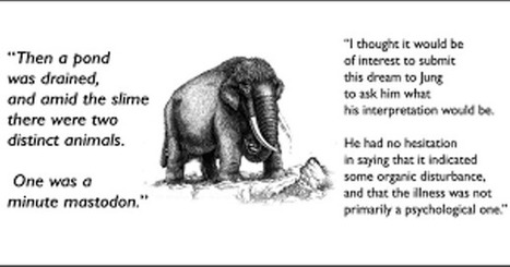 Carl Jung: The dream you mentioned, you may remember, was a dream of the little mastodon.   Carl Jung Depth Psychology   Scoop.it
