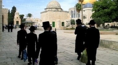 Alray - Settlers storm Al-Aqsa, Islamic students confront - Media Agency | Occupied Palestine | Scoop.it