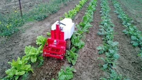 Le robot Oz veut assister l'agriculture bio | Des 4 coins du monde | Scoop.it