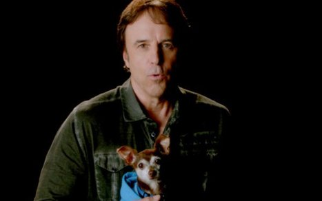 Kevin Nealon Will Scare You Into Adopting a Puppy [VIDEO] | Good Advice | Scoop.it