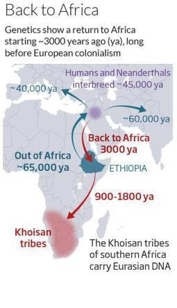 Humanity's forgotten return to Africa revealed in DNA - New Scientist | Africa | Scoop.it