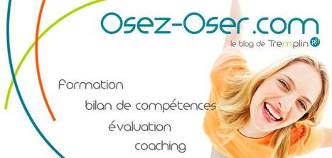Construire, s'amuser, manager : petit exercice de sensibilisation à l'usage des honnêtes managers   Osez Oser   Scoop.it