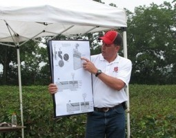 Cotton Field Day is Sept. 12 | CALS News Center | Research from the NC Agricultural Research Service | Scoop.it