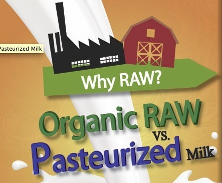 Raw vs. Pasteurized Milk Debate | fitness | Scoop.it
