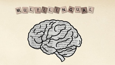 How to learn a new language: 7 tips from TED Translators   Malta Digital Curation and Learning   Scoop.it