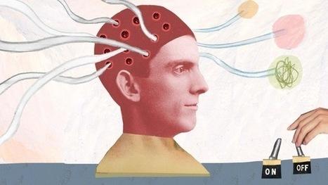 Bursts Of Light Create Memories, Then Take Them Away   Psychology   Scoop.it
