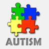 The Puzzle We Call Autism