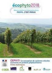 systèmes viticoles économes en produits phytosanitaires -Institut Francais de la Vigne et du Vin   Vignes et vins   Scoop.it
