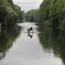 la Voliere aux Pianos | L'art contemporain exposé en milieu rural | Scoop.it