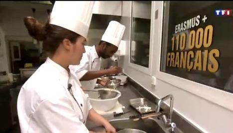 Agence Europe-Education-Formation France - Programmes européens d'éducation - Erasmus plus | Les politiques éducatives | Scoop.it