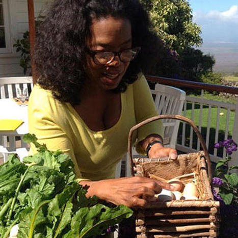 Oprah keeps chickens, so why can't we? The urban farming movement in Canada | Vertical Farm - Food Factory | Scoop.it