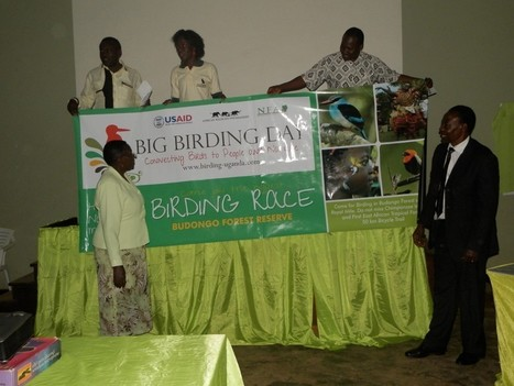 The Big Birding Day 2103, Connecting People to Birds and Nature | African Adventure Travellers | Affiliate tools page | Scoop.it