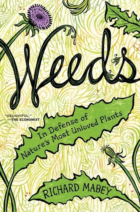 'Weeds': In Defense Of Botany's Cockroach | AnnBot | Scoop.it