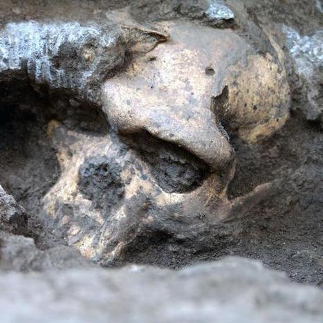 Descoberta sugere que homem primitivo pertenceu a uma única espécie | Meu Acre, Ciências, Brasil, Artes e Borboletas | Scoop.it