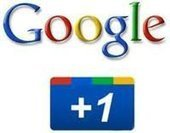 Get  Lots of Google +1 Adds to Your Webpage | Quick Social Media | Scoop.it