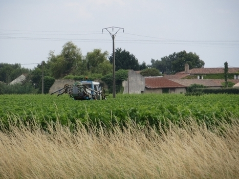 Pesticides, quand les victimes se rebiffent / France Inter   World Wine Web   Scoop.it