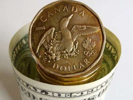 Loonie Slumps as Record Trade Gap Undercuts Canada Recovery Bets | Grain du Coteau : News ( corn maize ethanol DDG soybean soymeal wheat livestock beef pigs canadian dollar) | Scoop.it