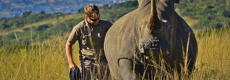 Thokozani Mlambo Receives Conservation Hero Award   Rhino Poaching & Wildlife Crime   Scoop.it