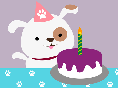 How to Throw a Dog a Birthday Party   Doggy Birthday Party   Scoop.it