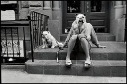 14 Lessons Elliott Erwitt Has Taught Me About Street Photography | Photography | Scoop.it