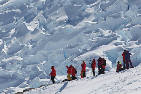 Chinese tourists take wedding shots in Antarctica, penguins flee in fear - Shanghaiist | Antarctica | Scoop.it