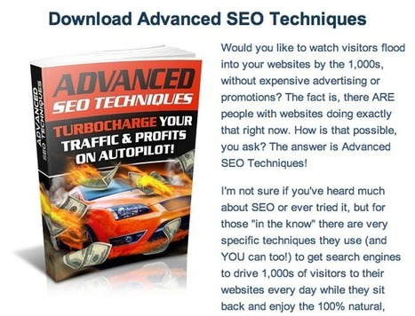 DOWNLOADS FREE ADVANCED SEO TECHNIQUES | Weight loss - why do we need it | Scoop.it