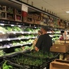 La Louve - Supermarché coopératif