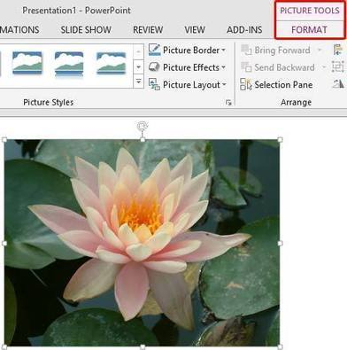 Artistic Effects for Pictures in PowerPoint 2013 | PowerPoint Tutorials | Scoop.it
