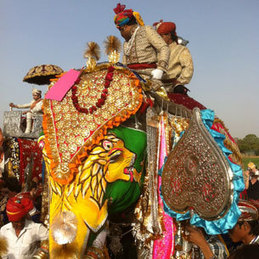 Splendors of Elephant Festival Tours in Jaipur, Rajasthan | India tour packages | Scoop.it