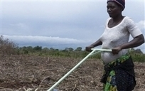 3 Labor Saving Technologies for Smallholder Farmers | ecoagriculture | Scoop.it