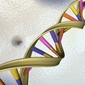 Sony va proposer des services de séquençage du génome humain | Innovation en Pharmacie | Scoop.it
