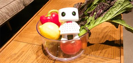 Cet accessoire allonge la durée de vie de vos fruits et légumes   IDEES BUSINESS   Scoop.it