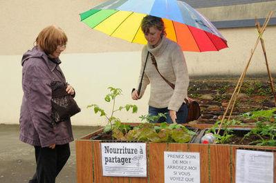 A Chavagne: «légumes gratuits, servez-vous» | Site de Rennes, Ville et Métropole | Mes articles | Scoop.it