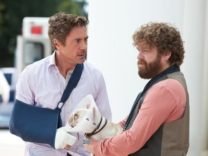 """Watch American Comedy Movie """"Due Date"""" on HBO - Friday, 17 May at 7.15 PM   English Comedy Movies   Scoop.it"""