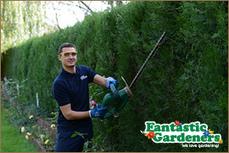 Gardening Services From Fantastic Gardeners Sydney | Gardening | Scoop.it