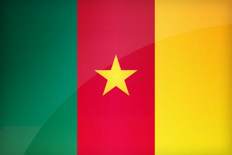 Mort de 8 personnes au Cameroun suite à un attentat | Actualités Afrique | Scoop.it
