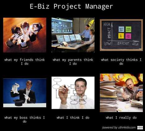 E-biz Project Manager | What I really do | Scoop.it