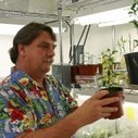 Biotechnology conference: Transgenics could head off 'the end of orange juice' - AgriLife (2013) | Biotechnology news for students | Scoop.it