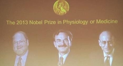 Σε δύο Αμερικάνους και ένα Γερμανό το βραβείο Νόμπελ Ιατρικής 2013 | Social in Greece | Scoop.it