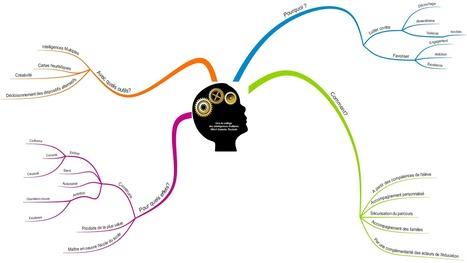 Carte heuristique : organiser ses idées pour être plus efficient | Cartes mentales | Scoop.it