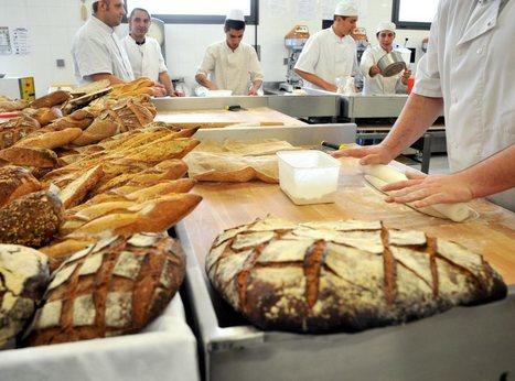 Boulangerie-pâtisserie : «Les erreurs  se paient cash» | La Dépêche.fr | Actu Boulangerie Patisserie Restauration Traiteur | Scoop.it