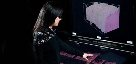 evl :: electronic visualization laboratory | Cabinet de curiosités numériques | Scoop.it