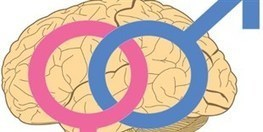Male and Female Brains Wired Differently | The #Scientist Magazine® | Health care industry | Scoop.it