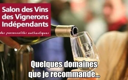 SALON VIGNERONS INDEPENDANTS | WINE & SPIRITS 2.0 | Scoop.it