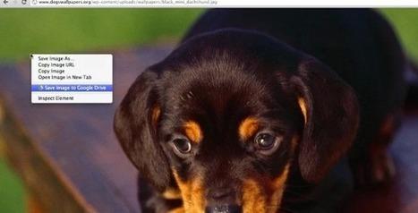 Une extension Chrome pour sauvegarder des contenus web sur Google Drive | ITyPA première approche | Scoop.it