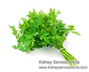 How Much Parsley Should Dialysis Patients Consume In a Week | kidney disease | Scoop.it